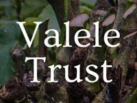 valele-trust